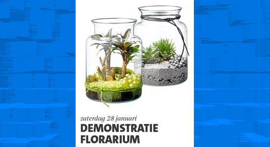 Demonstraties Florarium