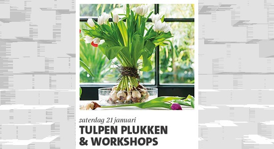 Workshop tulpenkrans (hele dag tulpenfeest)